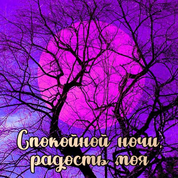 Картинка спокойной ночи радость моя мужчине - скачать бесплатно на otkrytkivsem.ru