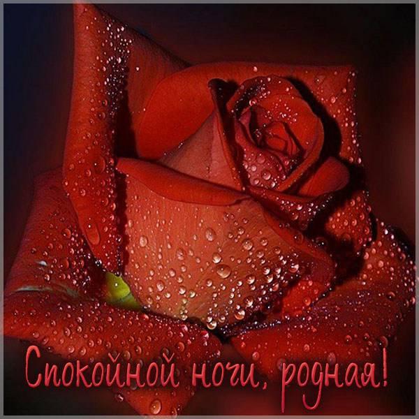 Картинка спокойной ночи родная - скачать бесплатно на otkrytkivsem.ru