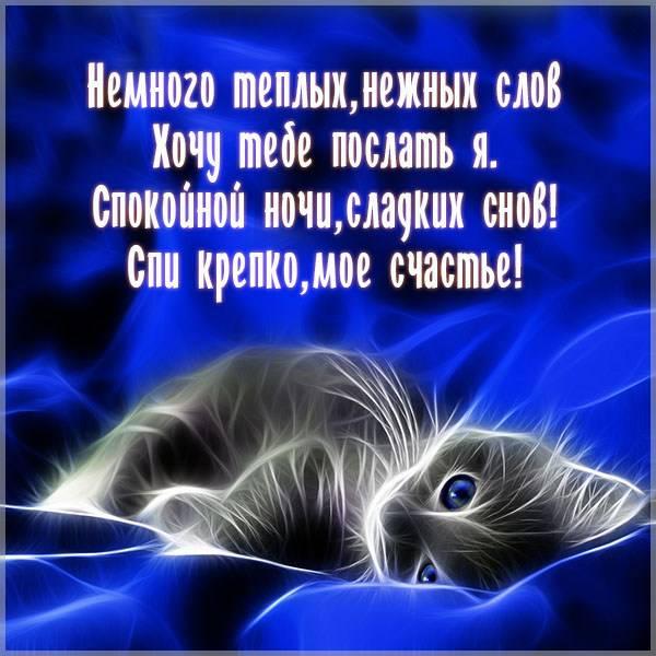 Картинка спокойной ночи с котом - скачать бесплатно на otkrytkivsem.ru
