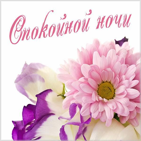 Картинка спокойной ночи с цветами нежная - скачать бесплатно на otkrytkivsem.ru
