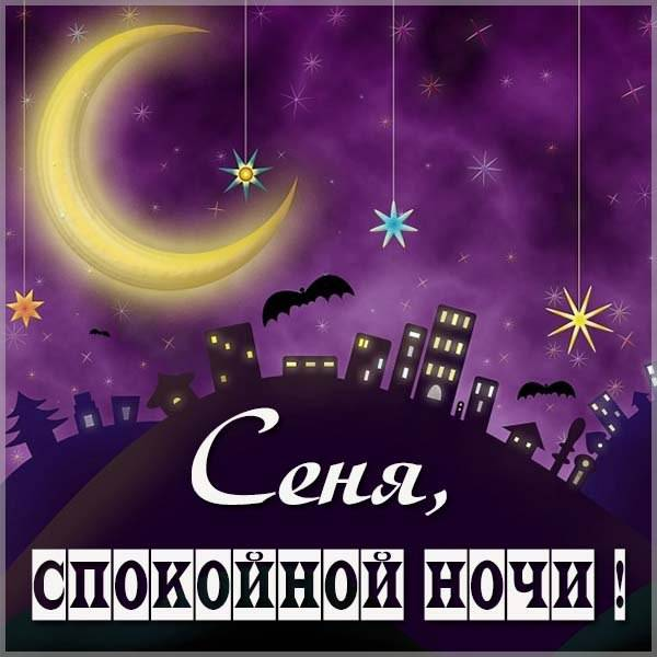 Картинка спокойной ночи Сеня - скачать бесплатно на otkrytkivsem.ru