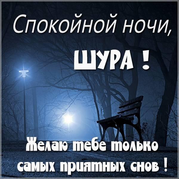 Картинка спокойной ночи Шура - скачать бесплатно на otkrytkivsem.ru