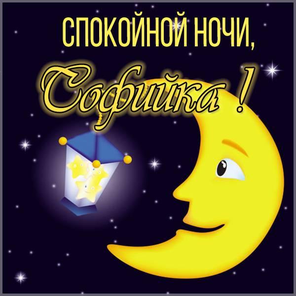 Картинка спокойной ночи Софийка - скачать бесплатно на otkrytkivsem.ru