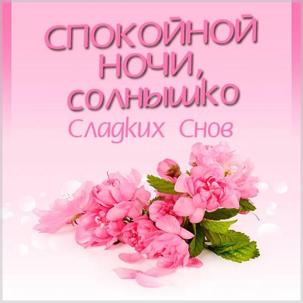 Картинка спокойной ночи солнышко сладких снов - скачать бесплатно на otkrytkivsem.ru