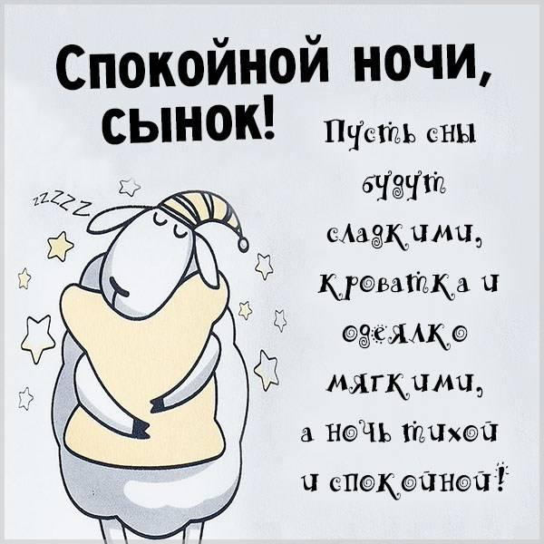 Картинка спокойной ночи сынок прикольная - скачать бесплатно на otkrytkivsem.ru