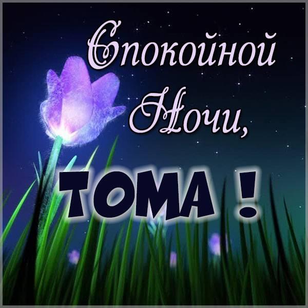 Картинка спокойной ночи Тома - скачать бесплатно на otkrytkivsem.ru
