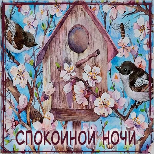 Картинка спокойной ночи весна красивая - скачать бесплатно на otkrytkivsem.ru