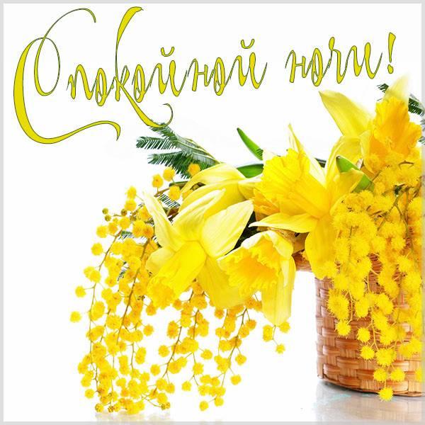Картинка спокойной ночи весна цветы - скачать бесплатно на otkrytkivsem.ru