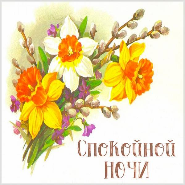 Картинка спокойной ночи весна - скачать бесплатно на otkrytkivsem.ru