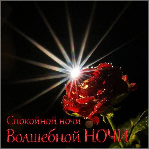 Картинка спокойной ночи волшебной ночи - скачать бесплатно на otkrytkivsem.ru