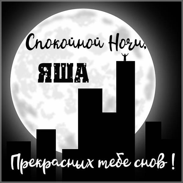 Картинка спокойной ночи Яша - скачать бесплатно на otkrytkivsem.ru