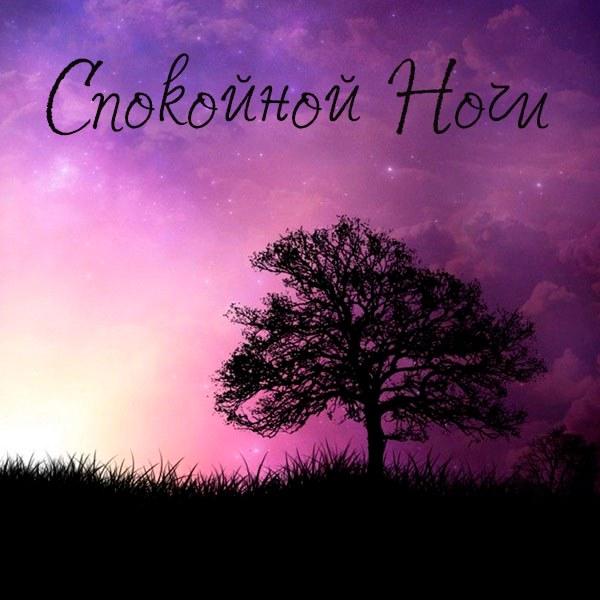 Картинка спокойной ночи закат с надписью - скачать бесплатно на otkrytkivsem.ru