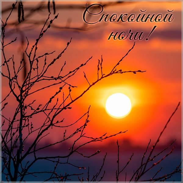Картинка спокойной ночи закат весна - скачать бесплатно на otkrytkivsem.ru