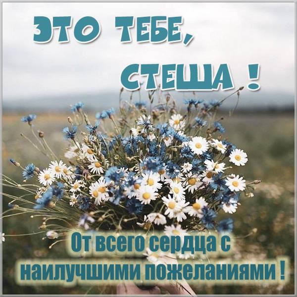 Картинка Стеша это тебе - скачать бесплатно на otkrytkivsem.ru