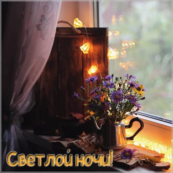 Картинка светлой ночи - скачать бесплатно на otkrytkivsem.ru