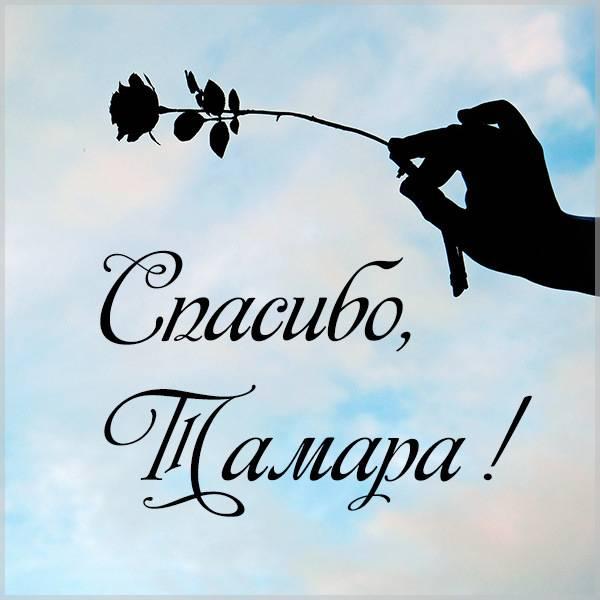Картинка Тамара спасибо - скачать бесплатно на otkrytkivsem.ru