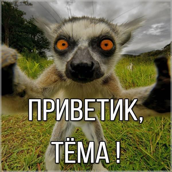 Картинка Тема приветик - скачать бесплатно на otkrytkivsem.ru