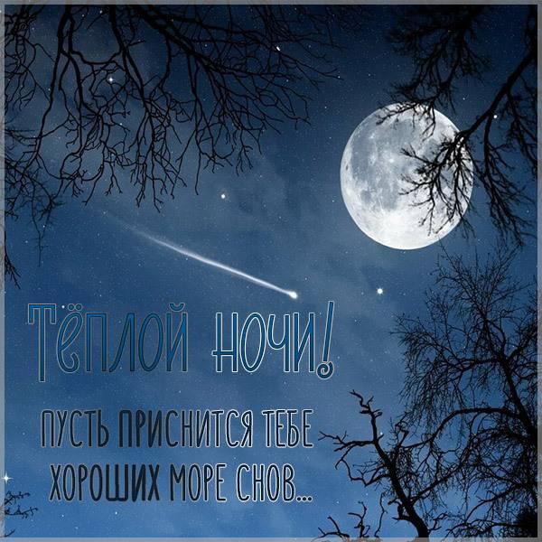 Картинка теплой ночи красивая необычная - скачать бесплатно на otkrytkivsem.ru