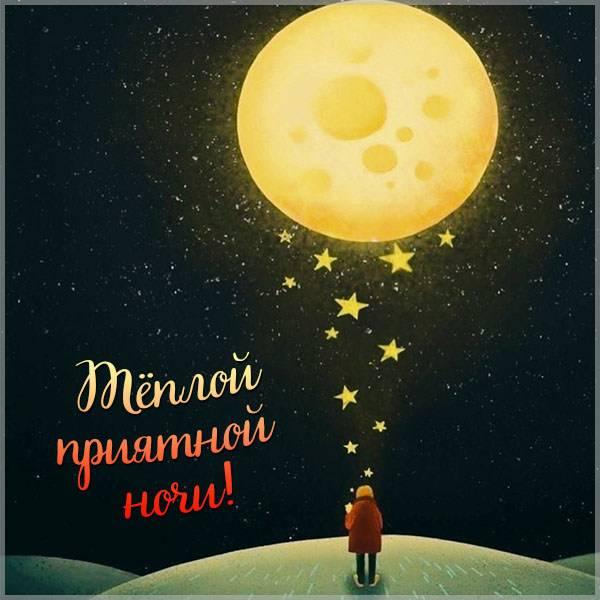 Картинка теплой приятной ночи - скачать бесплатно на otkrytkivsem.ru