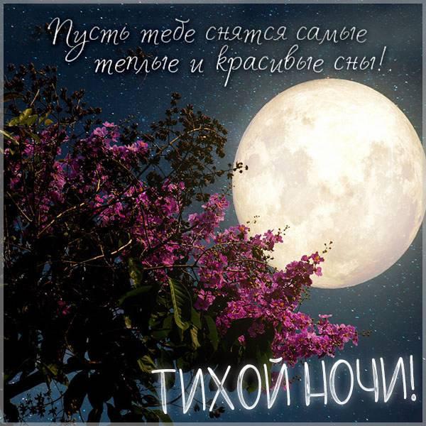 Картинка тихой ночи с пожеланием - скачать бесплатно на otkrytkivsem.ru