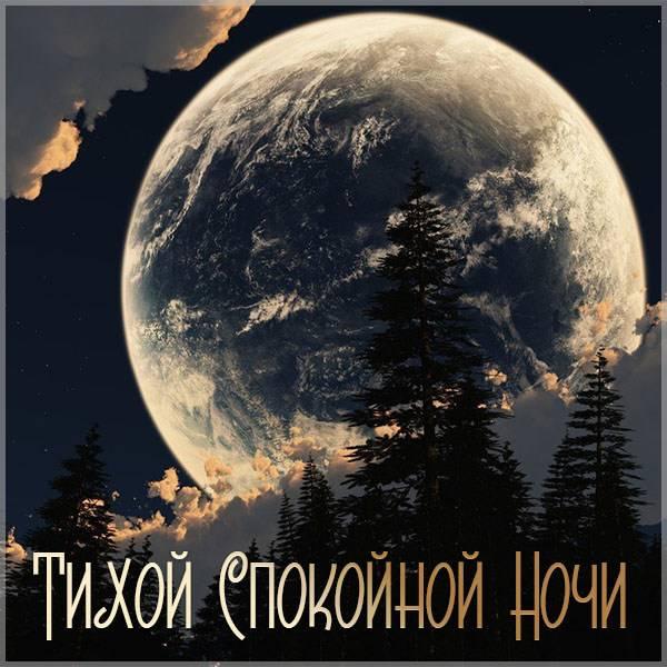 Картинка тихой спокойной ночи с надписью - скачать бесплатно на otkrytkivsem.ru