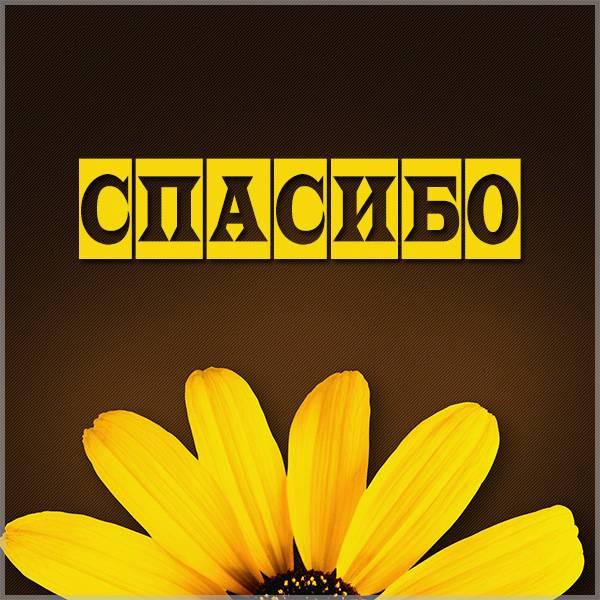 Картинка цветы с надписью спасибо - скачать бесплатно на otkrytkivsem.ru
