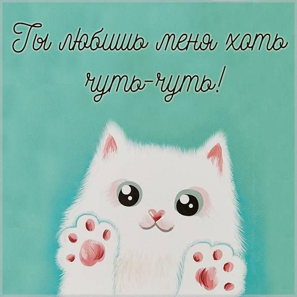 Картинка ты любишь меня хоть чуть чуть - скачать бесплатно на otkrytkivsem.ru