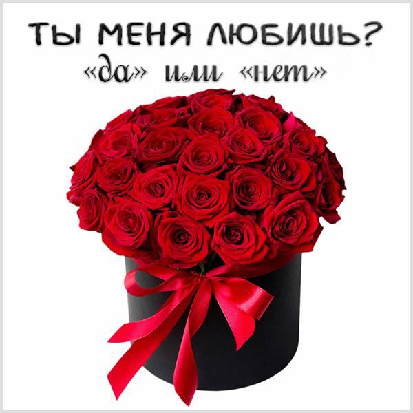 Картинка ты меня любишь да нет - скачать бесплатно на otkrytkivsem.ru