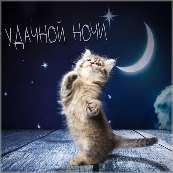 Картинка удачной ночи прикольная - скачать бесплатно на otkrytkivsem.ru