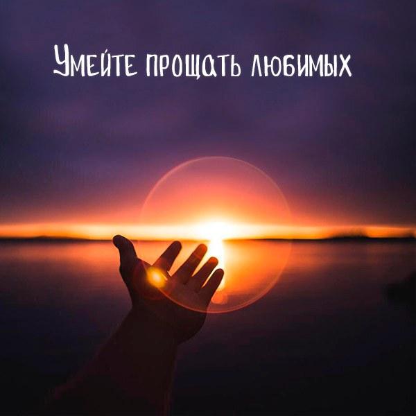 Картинка умейте прощать любимых - скачать бесплатно на otkrytkivsem.ru