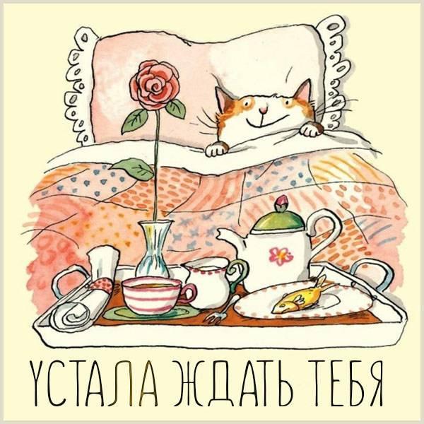 Картинка устала ждать тебя прикольная - скачать бесплатно на otkrytkivsem.ru