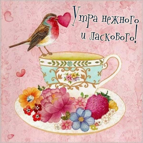 Картинка утра нежного и ласкового - скачать бесплатно на otkrytkivsem.ru
