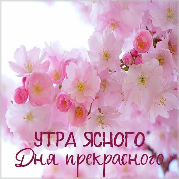 Картинка утра ясного дня прекрасного - скачать бесплатно на otkrytkivsem.ru