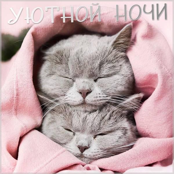 Картинка уютной ночи - скачать бесплатно на otkrytkivsem.ru