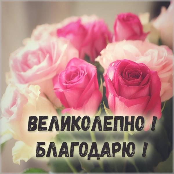 Картинка великолепно благодарю - скачать бесплатно на otkrytkivsem.ru