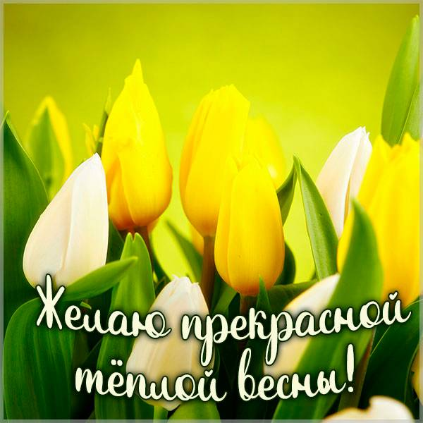 Картинка весенний позитив - скачать бесплатно на otkrytkivsem.ru