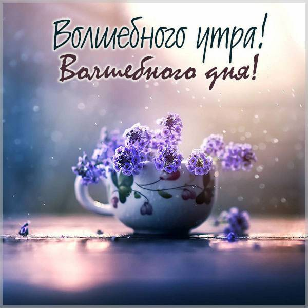 Картинка волшебного утра и дня - скачать бесплатно на otkrytkivsem.ru