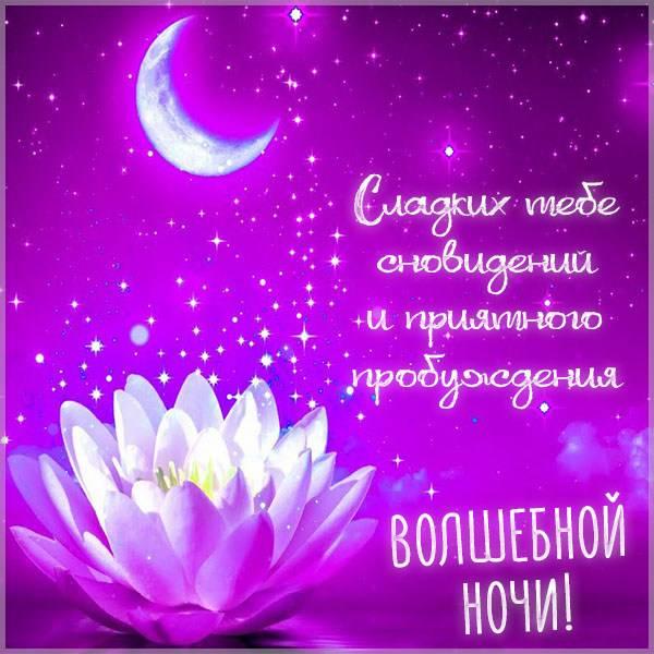 Картинка волшебной ночи с надписью - скачать бесплатно на otkrytkivsem.ru