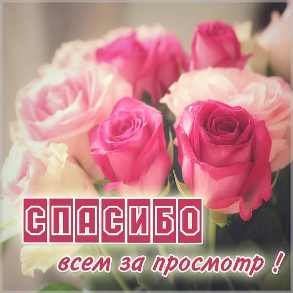 Картинка всем спасибо за просмотр - скачать бесплатно на otkrytkivsem.ru