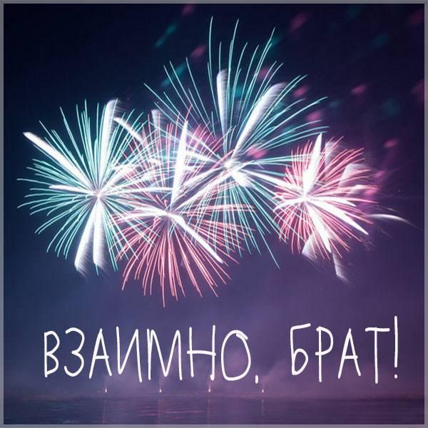 Картинка взаимно брат - скачать бесплатно на otkrytkivsem.ru