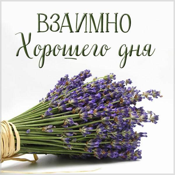 Картинка взаимно хорошего дня - скачать бесплатно на otkrytkivsem.ru
