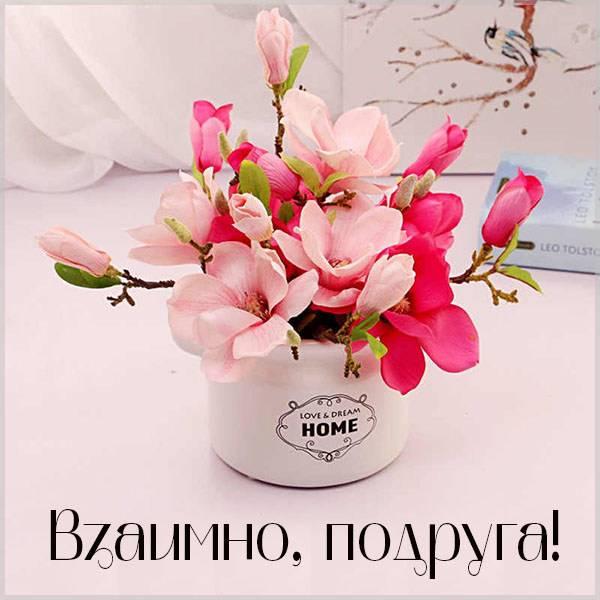 Картинка взаимно подруга - скачать бесплатно на otkrytkivsem.ru