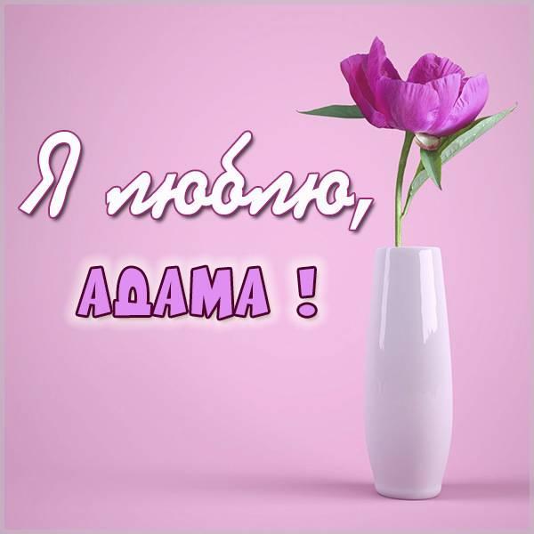 Картинка я люблю Адама - скачать бесплатно на otkrytkivsem.ru