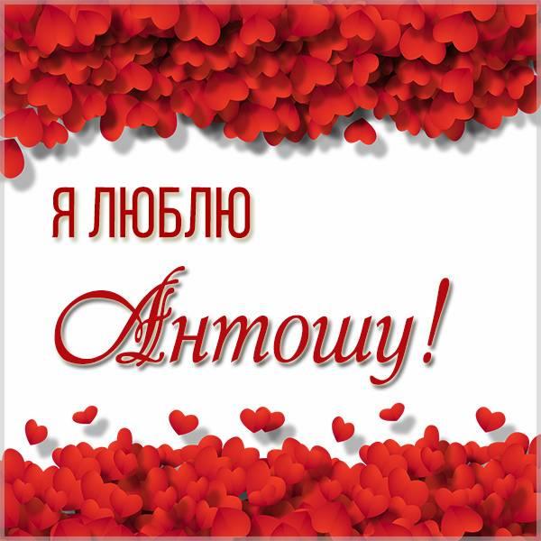 Картинка я люблю Антошу - скачать бесплатно на otkrytkivsem.ru
