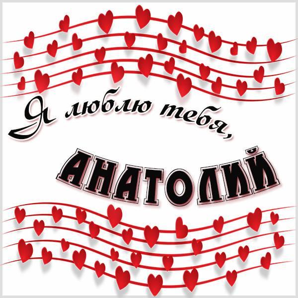 Картинка я люблю тебя Анатолий - скачать бесплатно на otkrytkivsem.ru