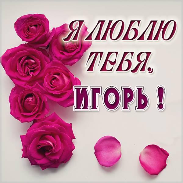 Картинка я люблю тебя Игорь - скачать бесплатно на otkrytkivsem.ru