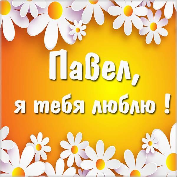Картинка я люблю тебя Павел - скачать бесплатно на otkrytkivsem.ru