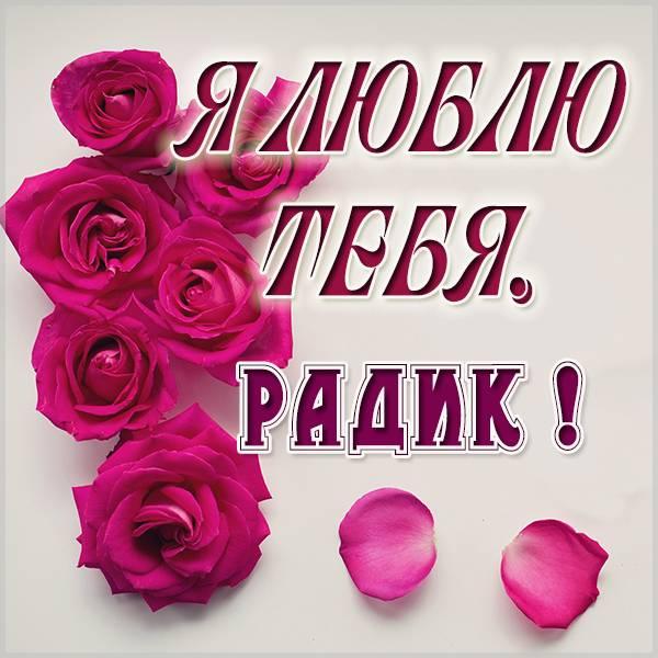 Картинка я люблю тебя Радик - скачать бесплатно на otkrytkivsem.ru