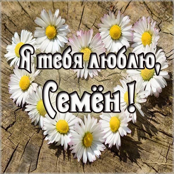 Картинка я люблю тебя Семен - скачать бесплатно на otkrytkivsem.ru