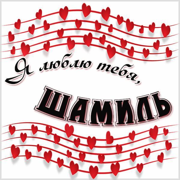Картинка я люблю тебя Шамиль - скачать бесплатно на otkrytkivsem.ru